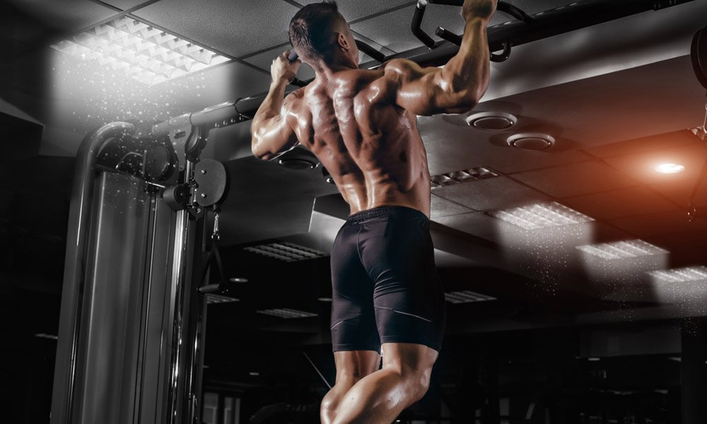 Best-Workout-for-the-Back