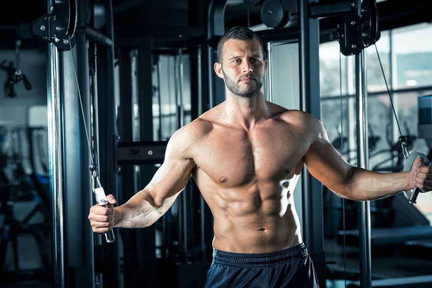 Chest routine perfect The Ultimate