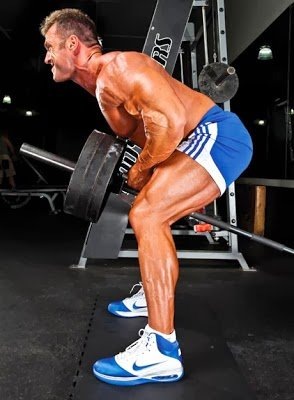 T Bar Row Exercise