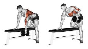 What is the dumbbell row exercise?