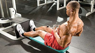 seated-cable-row-exercise