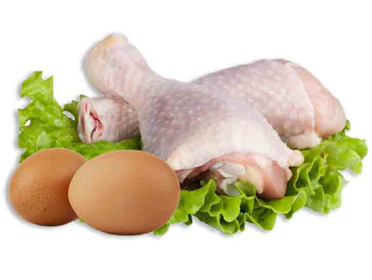 Chicken-and-Eggs-011015