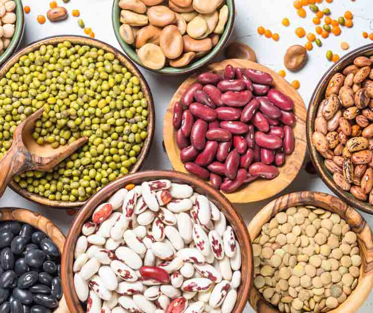 Filling Foods beans-0213215