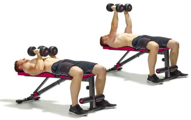 dumbbell-chest54gh