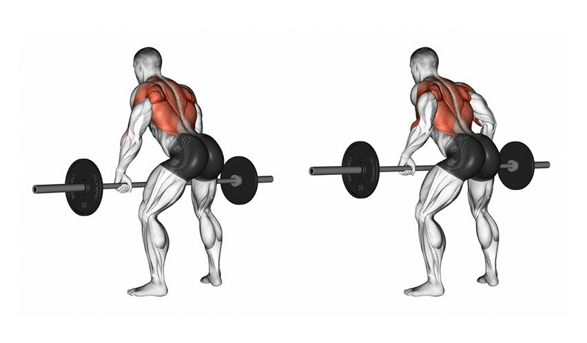 Full-body-Barbell-Workout-The-Best-06